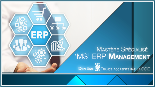MS-ERP-Management-